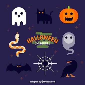 Flache packung von lustigen halloween-elementen