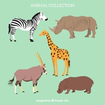 Flache satz von afrikanischen tieren