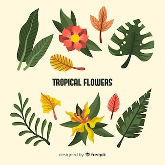 Flache tropische blumen und blätter