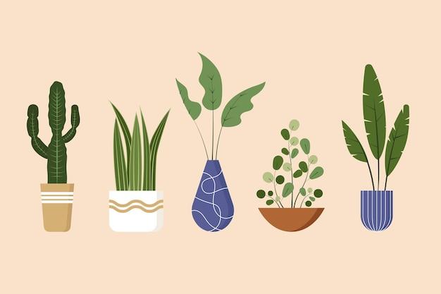 Flache zimmerpflanzensammlung