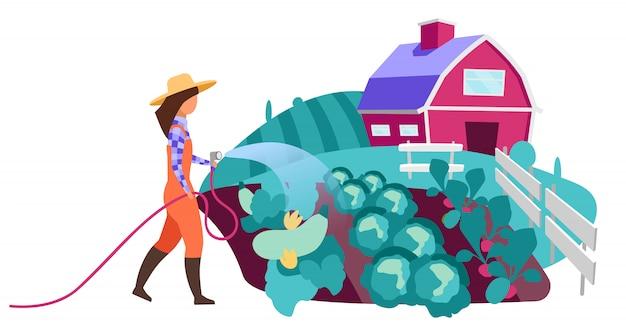Flacher charakter des weiblichen bauern, der gemüsegarten wässert. landarbeiter mit wasserschlauch. anbau, anbau von bio-gemüsepflanzen. ackerland, dorfbauernhof und feldkarikaturillustration
