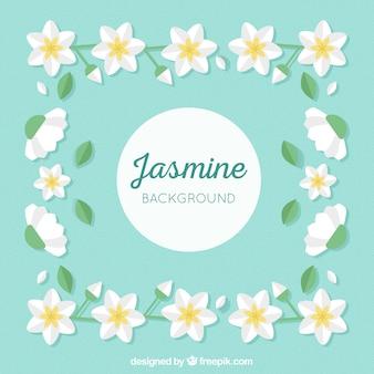 Flacher hintergrund mit schönen jasmin blumen