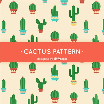Flacher kaktus hintergrund