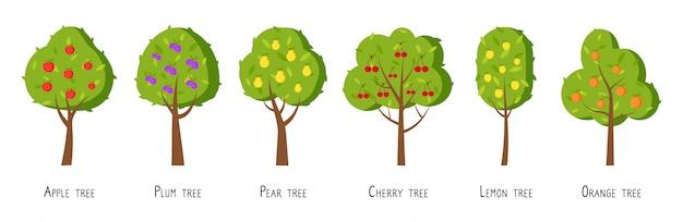 Flacher karikatursatz des obstbaums. verschiedene bäume mit reifem apfel, pflaume, birne, kirsche, zitrone, orange