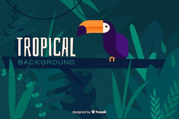Flacher tropischer hintergrund mit exotischem papagei