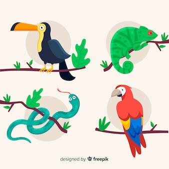 Flaches design der tropischen tiersammlung