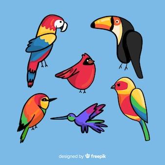 Flaches design exotische vögel sammlung