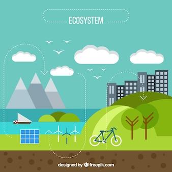 Flaches infographic ökosystemkonzept