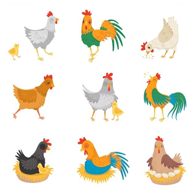 Flaches set mit hühnern, kleinen küken und hähnen. bauernhofvögel. hausgeflügel.