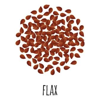 Flachs für vorlagenbauernmarktdesign, -etikett und -verpackung. natürliches energieprotein bio-superfood. isolierte illustration der vektorkarikatur.