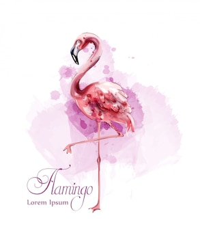 Flamingo-aquarell
