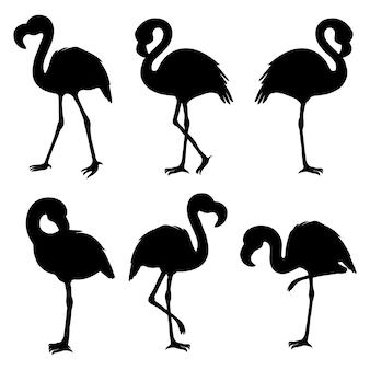 Flamingo isoliert. exotischer vogel. silhouette flamingo