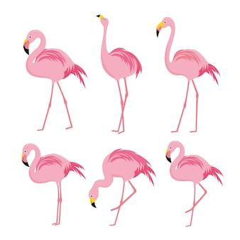 Flamingo-rosa-tiervogel-zeichentrickfilm-figur-vektor