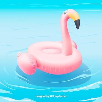 Flamingo schwimmt in einem schwimmbad