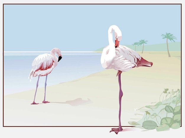 Flamingo-vektor