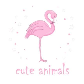 Flamingo-vogel