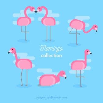 Flamingosammlung in verschiedenen posen