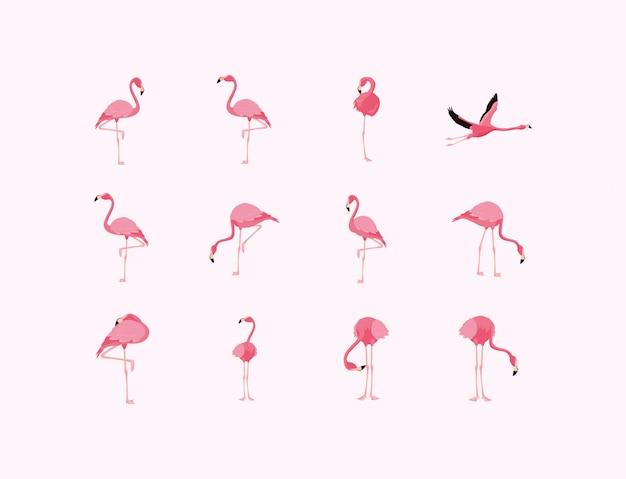 Flamingovögel eingestellt