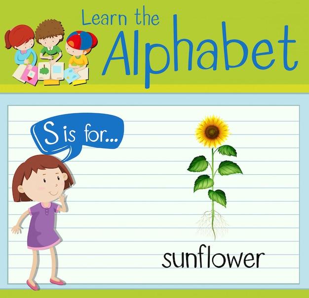 Flashcard buchstabe s ist für sonnenblume