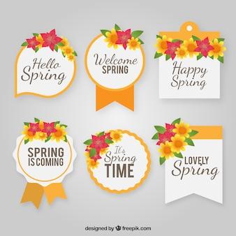 Flat spring label oder abzeichen sammlung