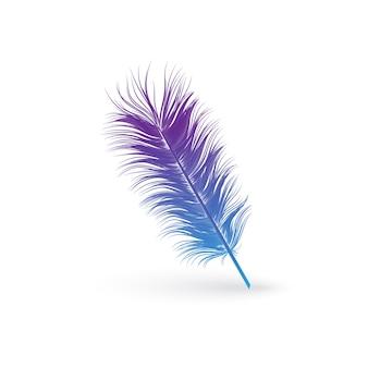 Flauschige blaue und lila vogelfeder