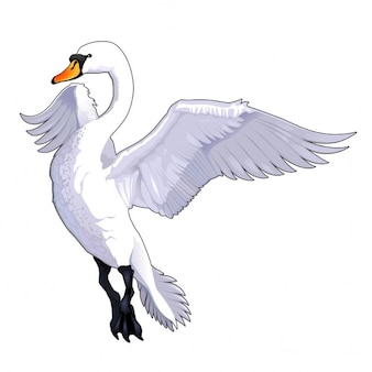 Fliegen schwan vector isolierten tier
