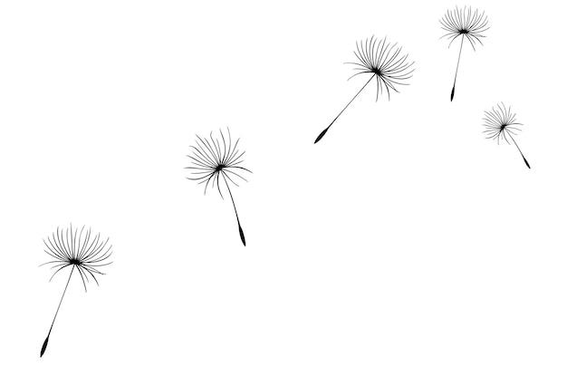 Fliegende löwenzahnsamen vektorsymbol vektor isoliertes dekorationselement aus verstreuten silhouetten