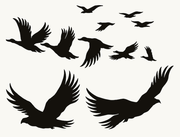 Fliegende vögel silhouetten vintage-konzept mit enten, adlern und möwen isoliert