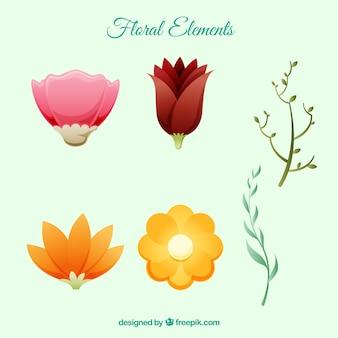 Floral elementsammlung mit flachem design