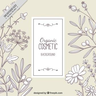 Floral hintergrund von skizzen kosmetik