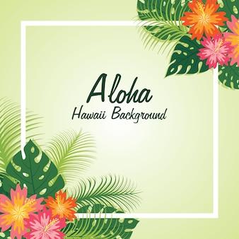 Floraler aloha rahmenhintergrund