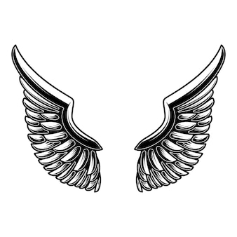 Flügelillustration lokalisiert auf weißem hintergrund. gestaltungselement für logo, label, schild, poster.