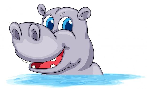 Flusspferd im wasser schwimmen