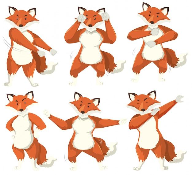 Fox charakter tanzposition
