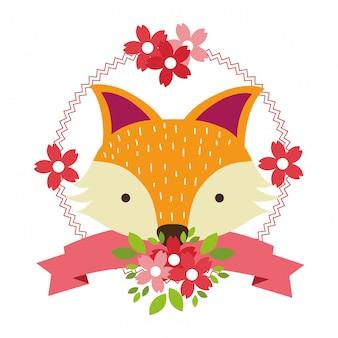 Fox nur gesicht