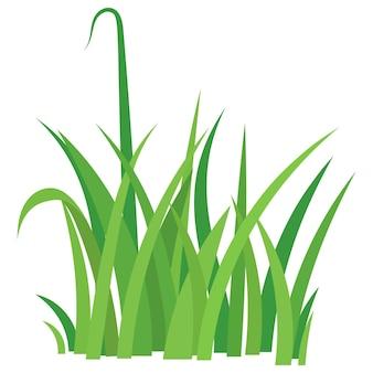 Fragment eines grünen grases.