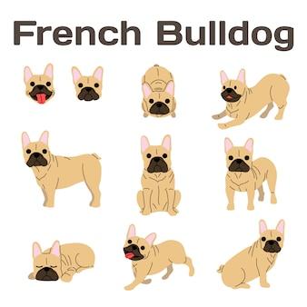 Französische bulldogge in der aktion, glücklicher hund