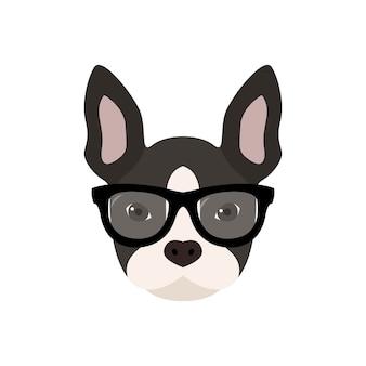 Französische bulldogge mit brille