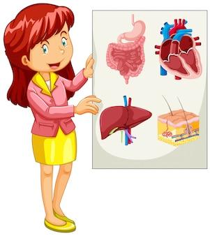Frau, die diagramm von organen darstellt