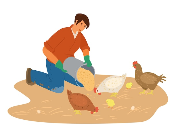 Frau farmer working feeds huhn mit gtains illustration.