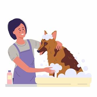 Frauenspezialistin des pflegesalons, der hund badet haustiere, die bürsten- und reinigungsdienste pflegen