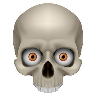 Freaky menschlicher schädel