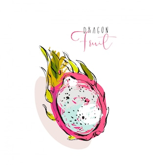 Freihand strukturierte illustration mit exotischen tropischen drachenfrucht oder pitaya lokalisiert auf weißem hintergrund.