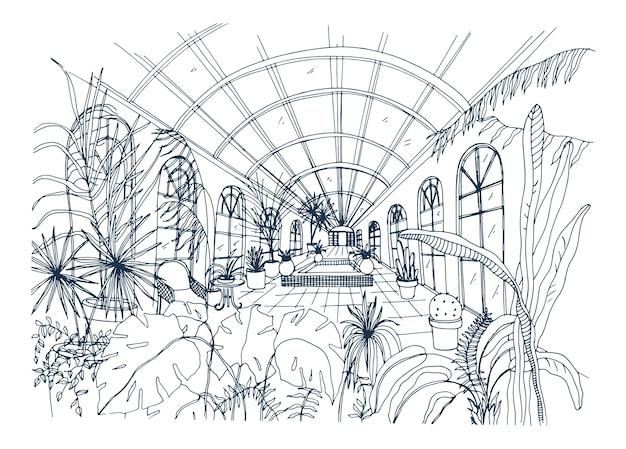 Freihandzeichnung des innenraums des gewächshauses voller tropischer pflanzen