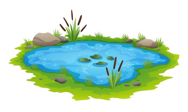 Freilandszene des natürlichen teichs. kleiner blauer dekorativer teich lokalisiert auf weiß, see pflanzt naturlandschaftsfischenplatz. landschaft von natürlichem teich mit blumenblüte. grafikdesign für frühlingsjahreszeit