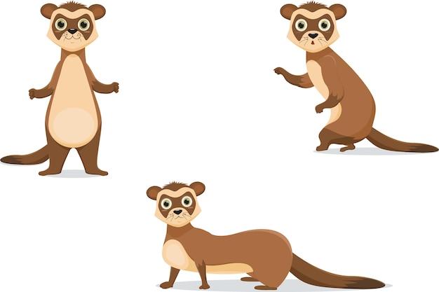 Frettchen illustrationen in verschiedenen posen.