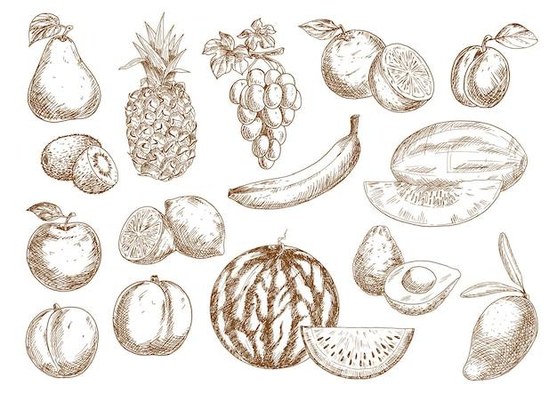 Frisch geerntete orangen und bananen, apfel und mango, ananas und pfirsich
