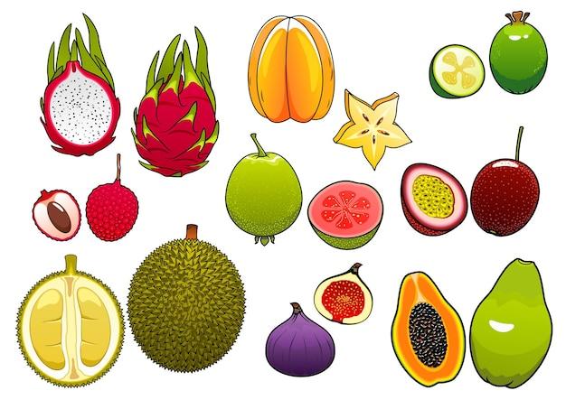 Frisch gepflückte helle sternfrucht und rosa litschi, weiche und reife passionsfrucht und feijoa, feige und papaya, saftige guave, drachenfrucht und süße durianfrüchte
