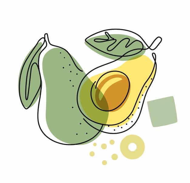 Frische avocado auf farbigem abstraktem hintergrund