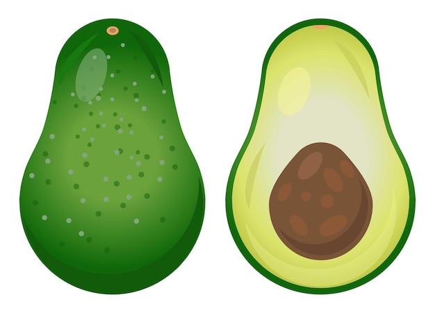 Frische avocado illustration köstliche avocado in scheiben geschnittene avocado